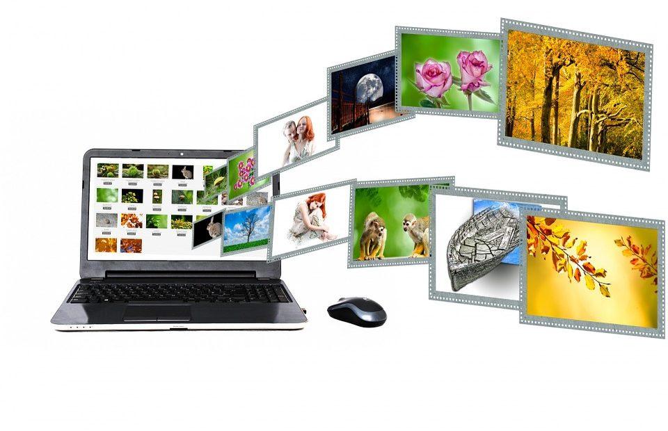 internet portale